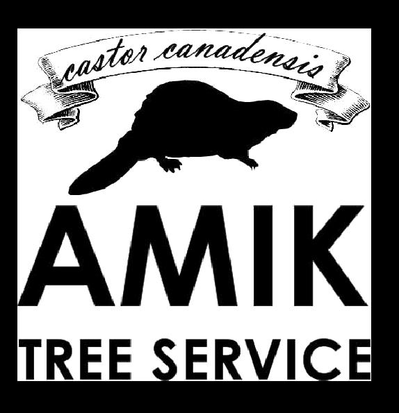 amiktree logo